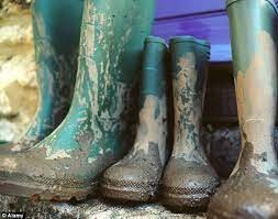 3 pairs of rubber boots with mud on them.