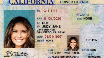 On The Nature of Vaccine Reticence:California drivers license with picture of young woman