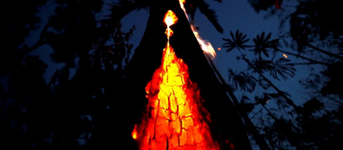 FILE PHOTO: A burning tree is seen during a fire in an area of the Amazon rainforest in Itapua do Oeste, Rondonia State, Brazil, September 11, 2019. Picture taken September 11, 2019. REUTERS/Bruno Kelly     TPX IMAGES OF THE DAY/File Photo - RC12F98C0E70